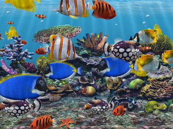 3d Screensaver | Aquarium