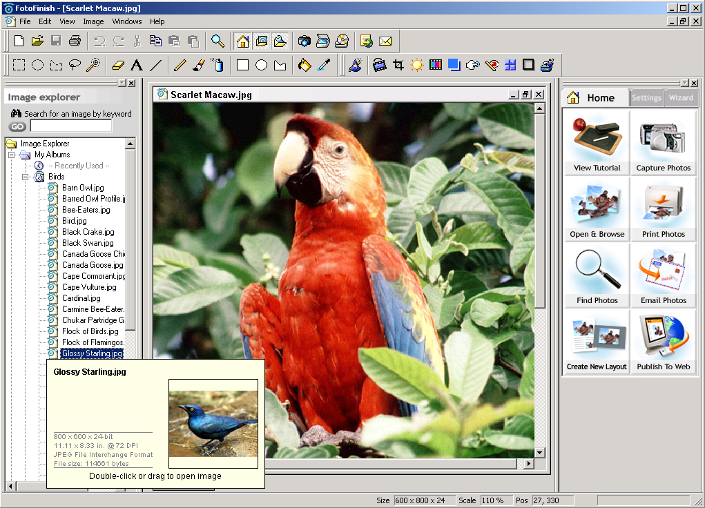 is the easiest software for your digital camera! Print, edit
