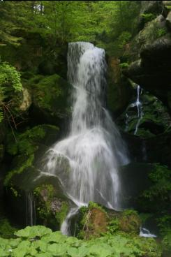 ���� ���� ���� ����� ������ free-waterfall-screensaver-6764.jpg