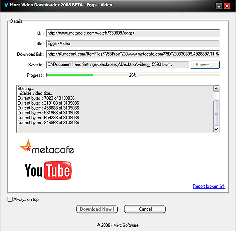 Morz Video Downloader Screenshot